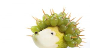 Hedgehog - Pear and grape